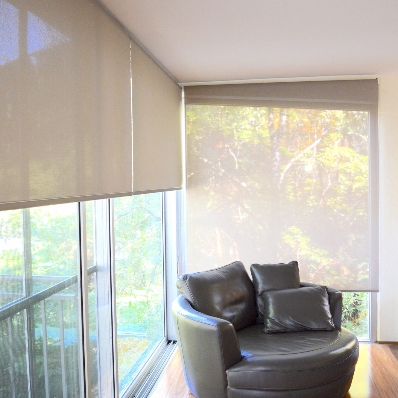 Translucent roller blinds forward rolled
