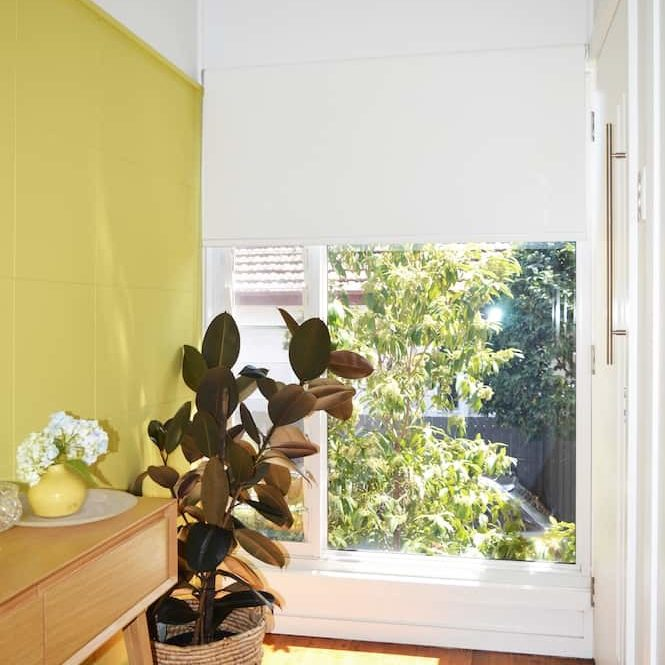 White blockout roller blind